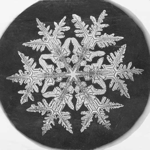 Poetry Friday: Eureka! Poems About Inventors, Snowflake