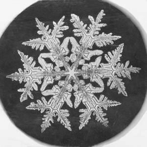 By Smithsonian Institution from United States (Snowflake Study  Uploaded by PDTillman) [see page for license], via Wikimedia Commons
