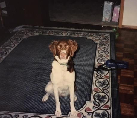 Cleo, 1994-2003